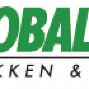 logo mobalpa grini ski bygg